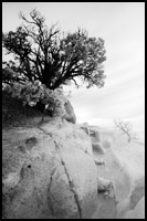 Infrared Photo - Tsankawi